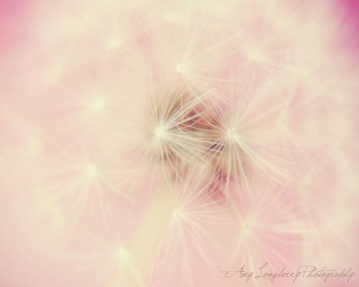 Make A Wish 8x10 - ALPhotography