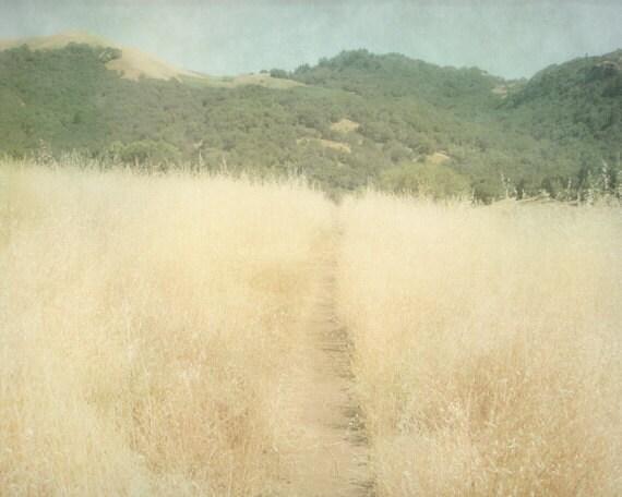 Landscape Photograph 8x10, Wilderness Mountain Photography, Neutral Colors Tan Green Blue, Natural Home Decor, Adventure Hiking Wall Art, - PureNaturePhotos