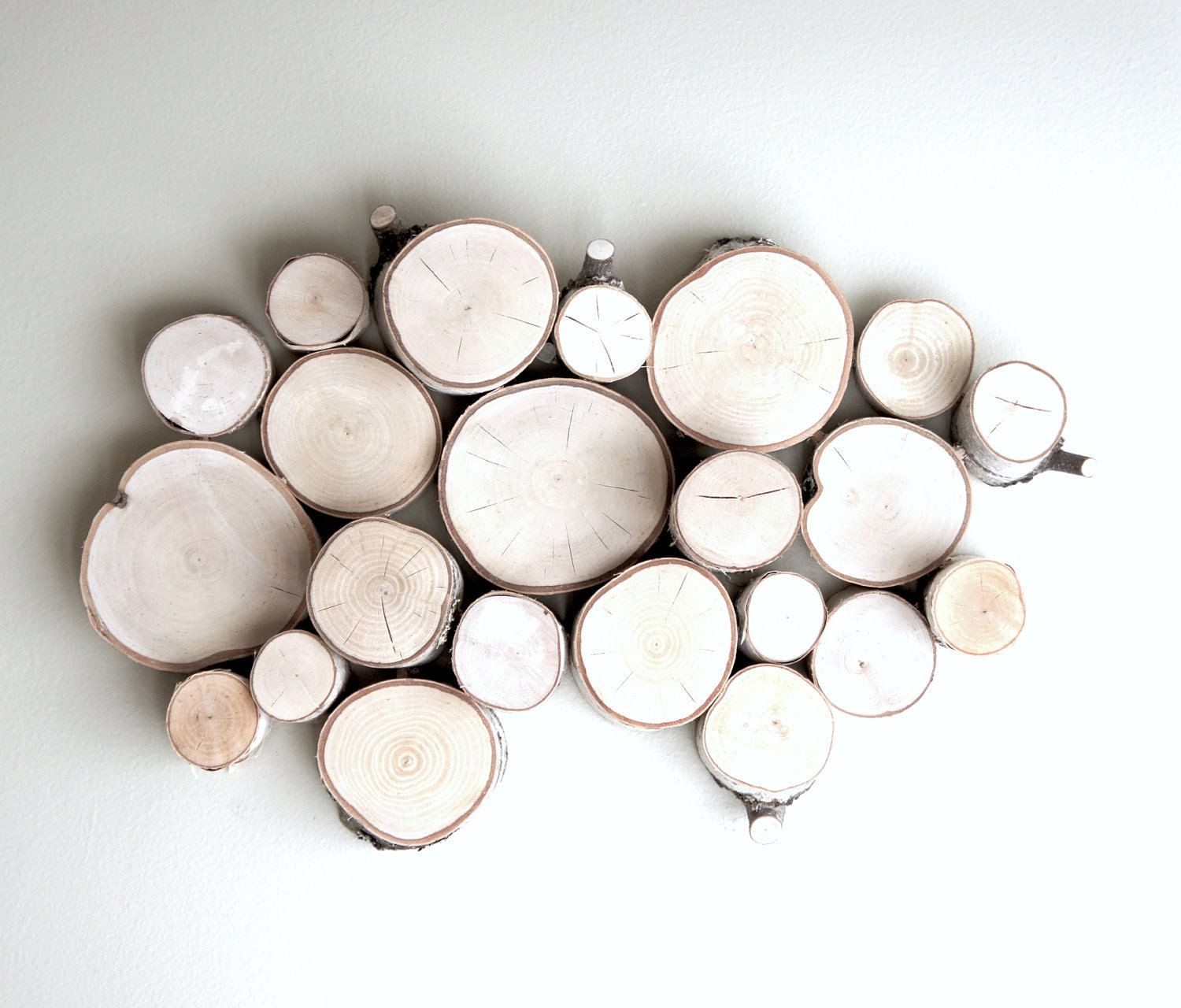 white birch forest topography - organic wood wall art - made to order - urbanplusforest