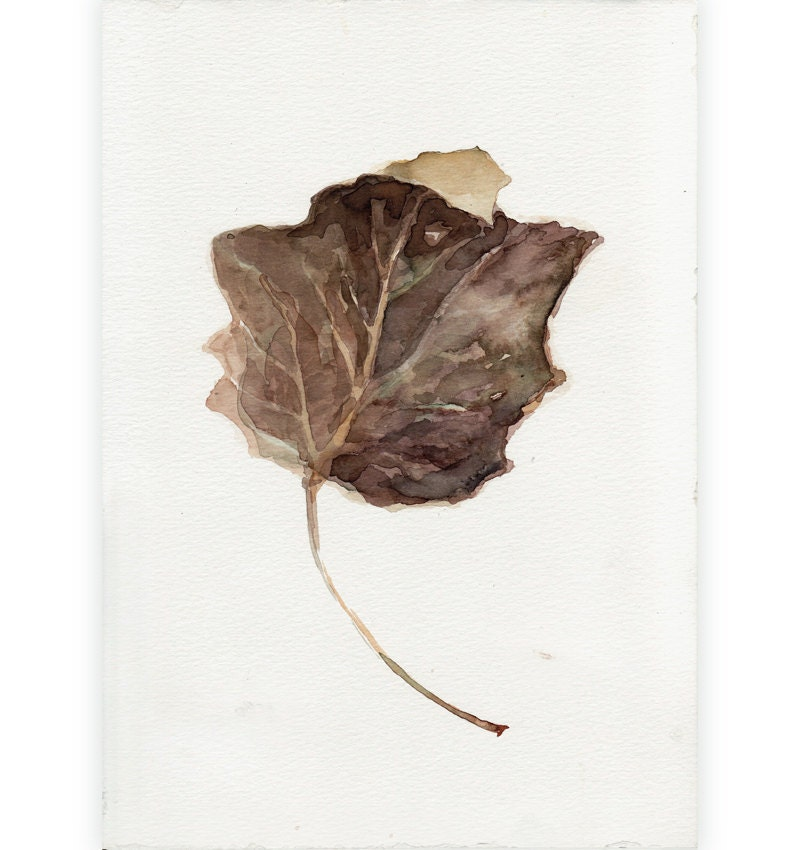 Original Painting Watercolor - Brown Autumn Leaf - Fine Art Painting in Brown Fall Color - FluidColors