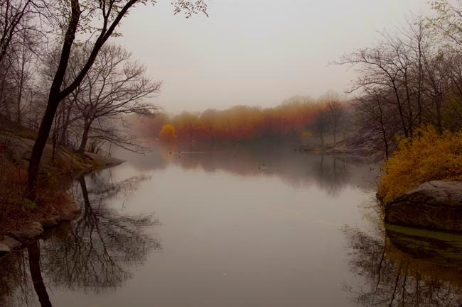 Autumn photography, silver pond in fall, fog, titanium gray brown dark - rustic home fall decor -12x8 photograph - earth tones reds oranges - Raceytay