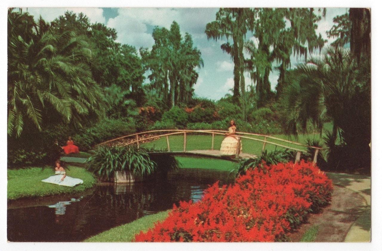 Items Similar To Cypress Gardens Florida Postcard Circa