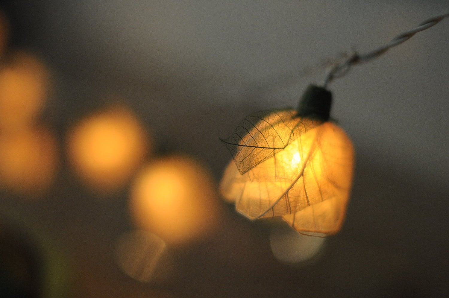 String Lights Garage : Romantic valentine Rose flower leaf string light patio rose living room strand eBay
