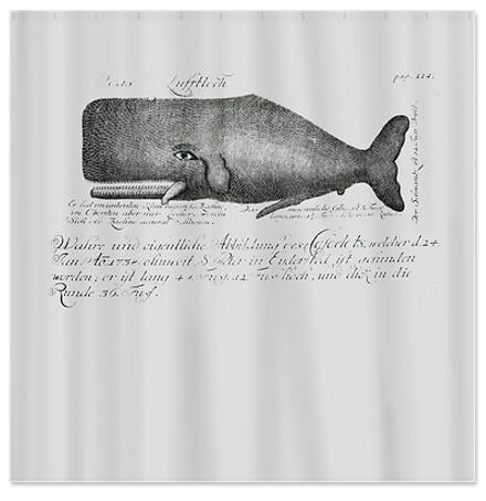 Gray Vintage Whale Shower Curtain Vintage Book by ShowerThePeople