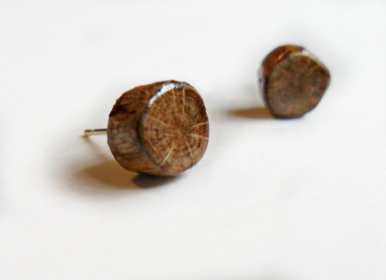 Barkless Oak Stud Earrings - Autumn Fall Fashion - Wood Jewelry - Rustic Woodland - LaurelAndLime