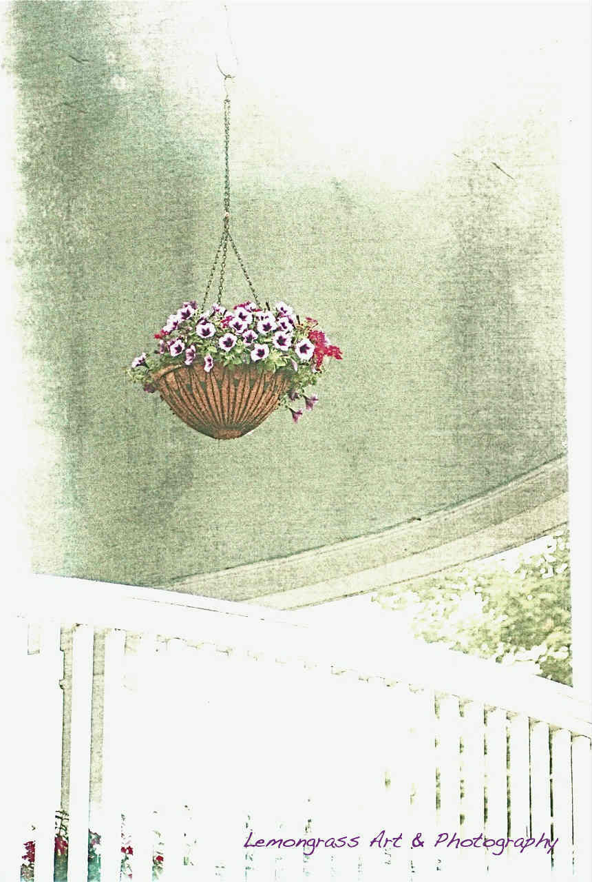 "Hanging Basket Of Flowers On The Porch 6"" x 9"" Fine Art Print Plus More Sizes - LemongrassArt"