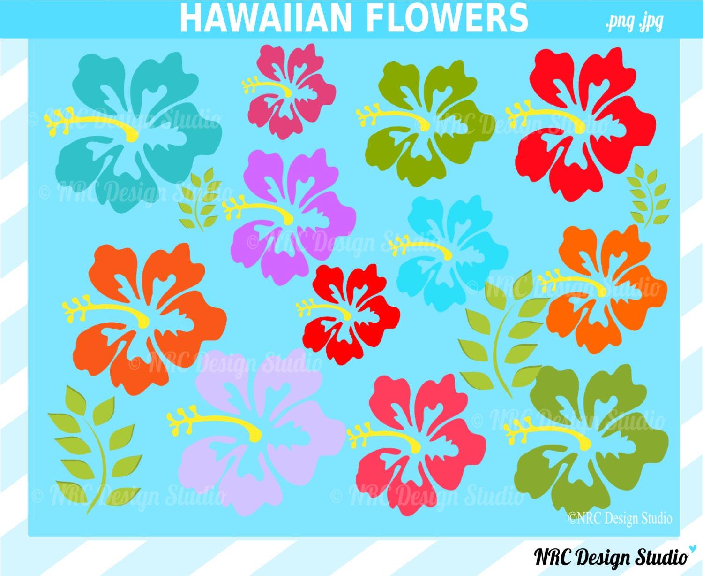 Hawaiian flower clipart border flower boder images new calendar hawaiian flower clipart border download izmirmasajfo