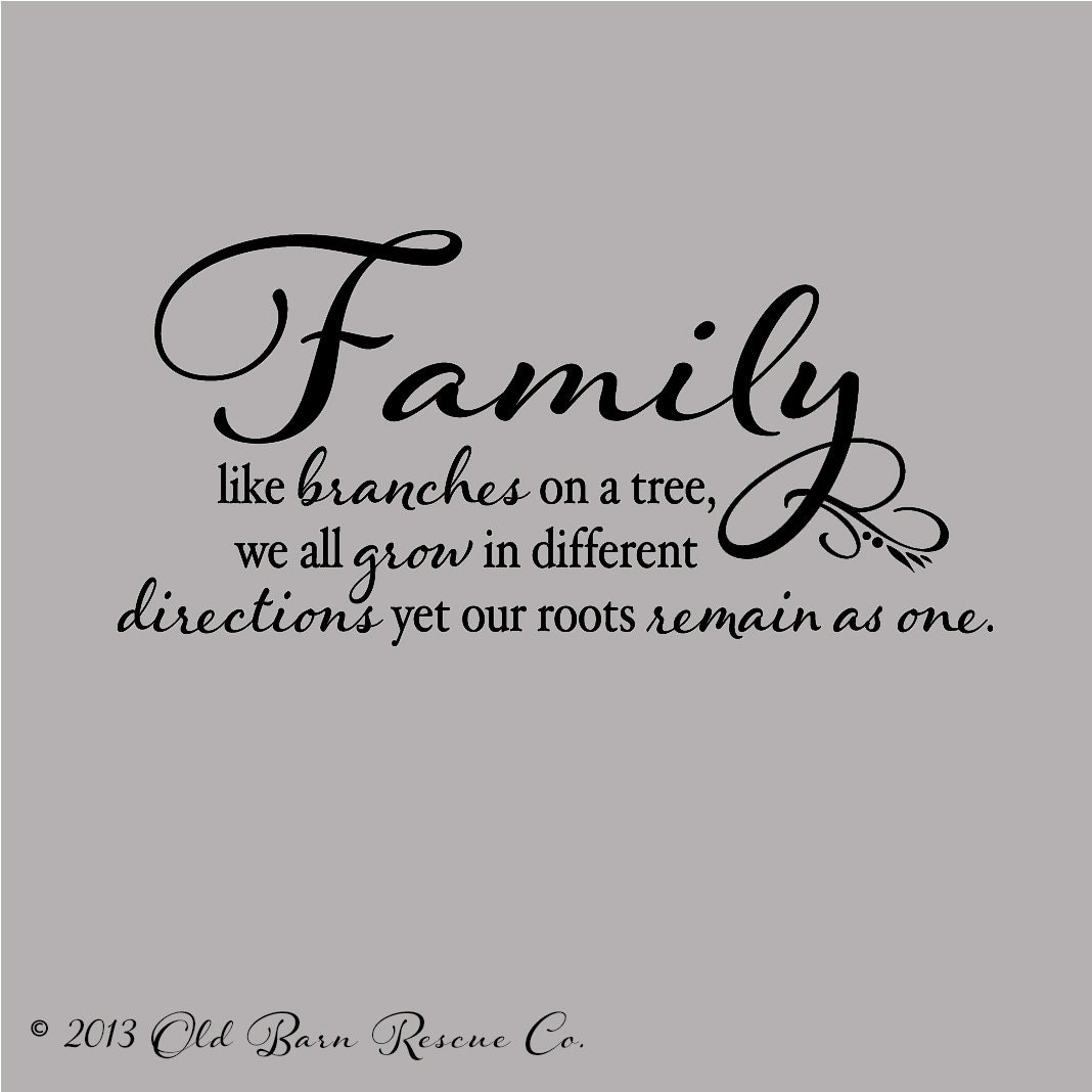 Quote Modznrockers Blackpool Quote Script Tree: Family Like Branches On A Tree... Vinyl By