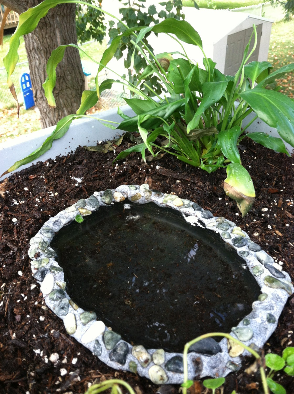 Fairy garden pond by essentialwhimsy on etsy for Premade koi ponds
