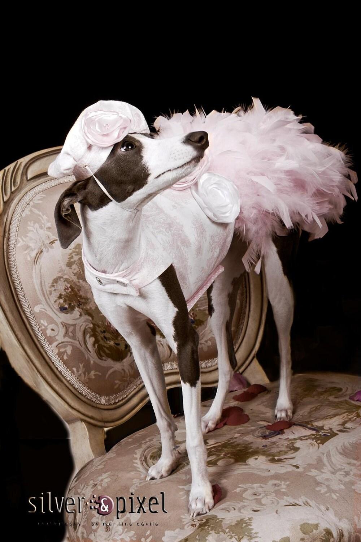 Розовый Toile перо Harness собак платье