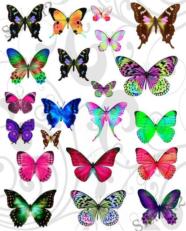 Рамки бабочка и коллажи онлайн