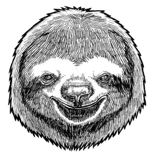 Sloth Mask Printable Imgkid Com The Image Kid Has It Template Anteater
