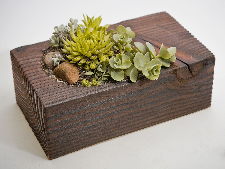 re-Beam Planter with Succulent Arrangement