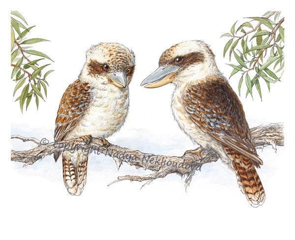 Kookaburras - 8x10 inches (20x25cm) Australian Wildlife Art Print - giclee reproduction, nature decor, woodland bird art - oceloteyes