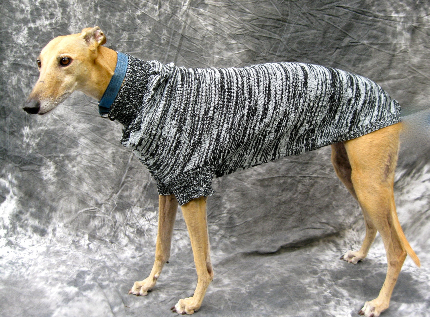 Greyhound Sweater Medium Black/grey brindle by greyhoundhappy
