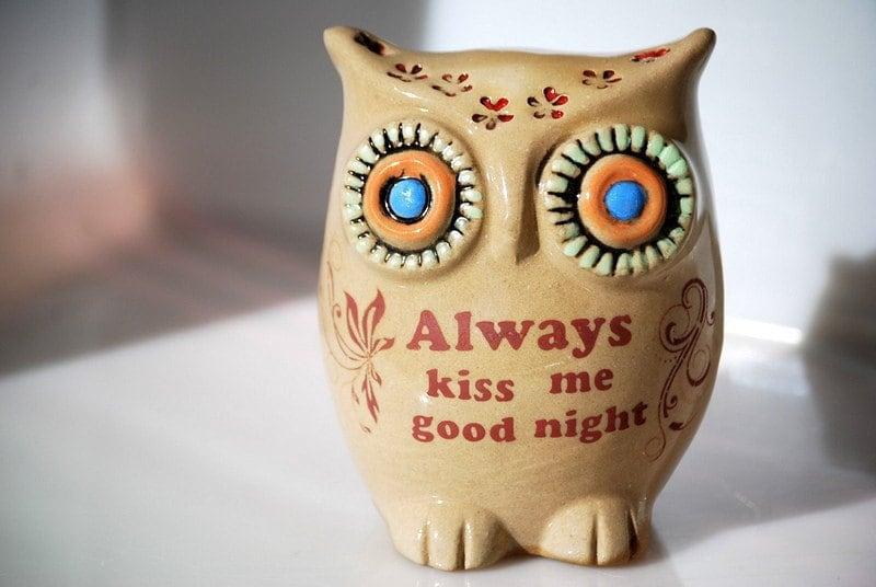 "valentine owl  ""always kiss me good night"" home decor"