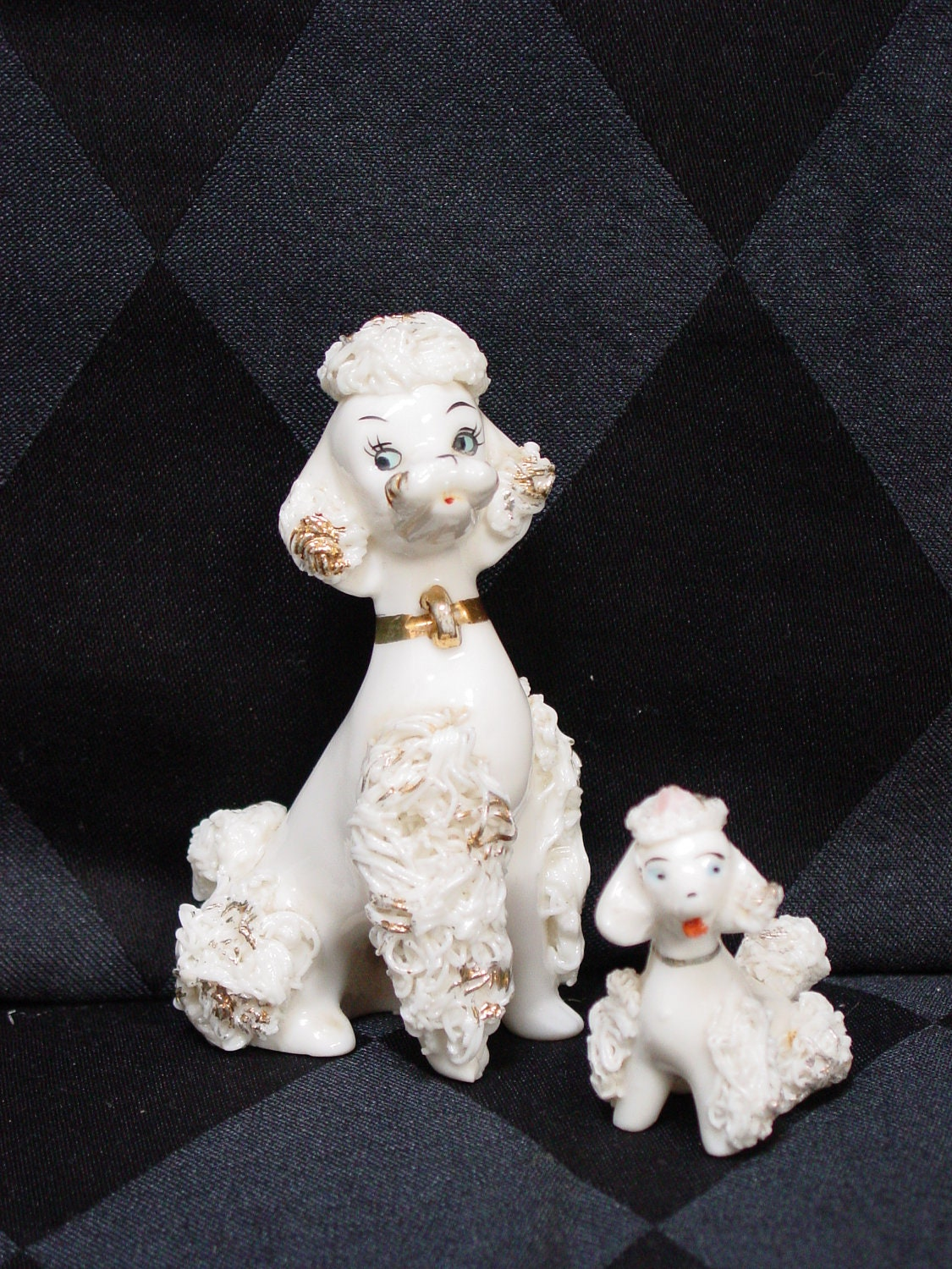 White Baby Poodles