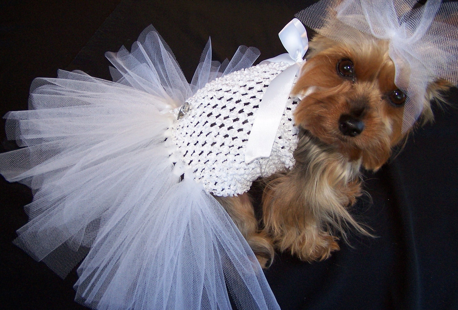 Items Similar To Dog Tutu Wedding Dress For Small Breeds
