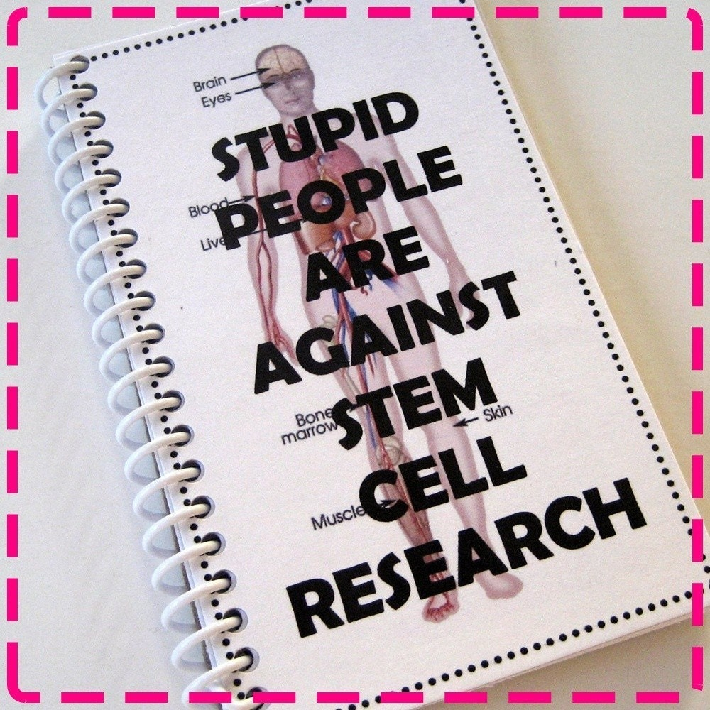 stem cell research arguments against