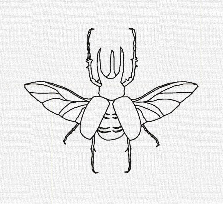 Rhino beetle drawing