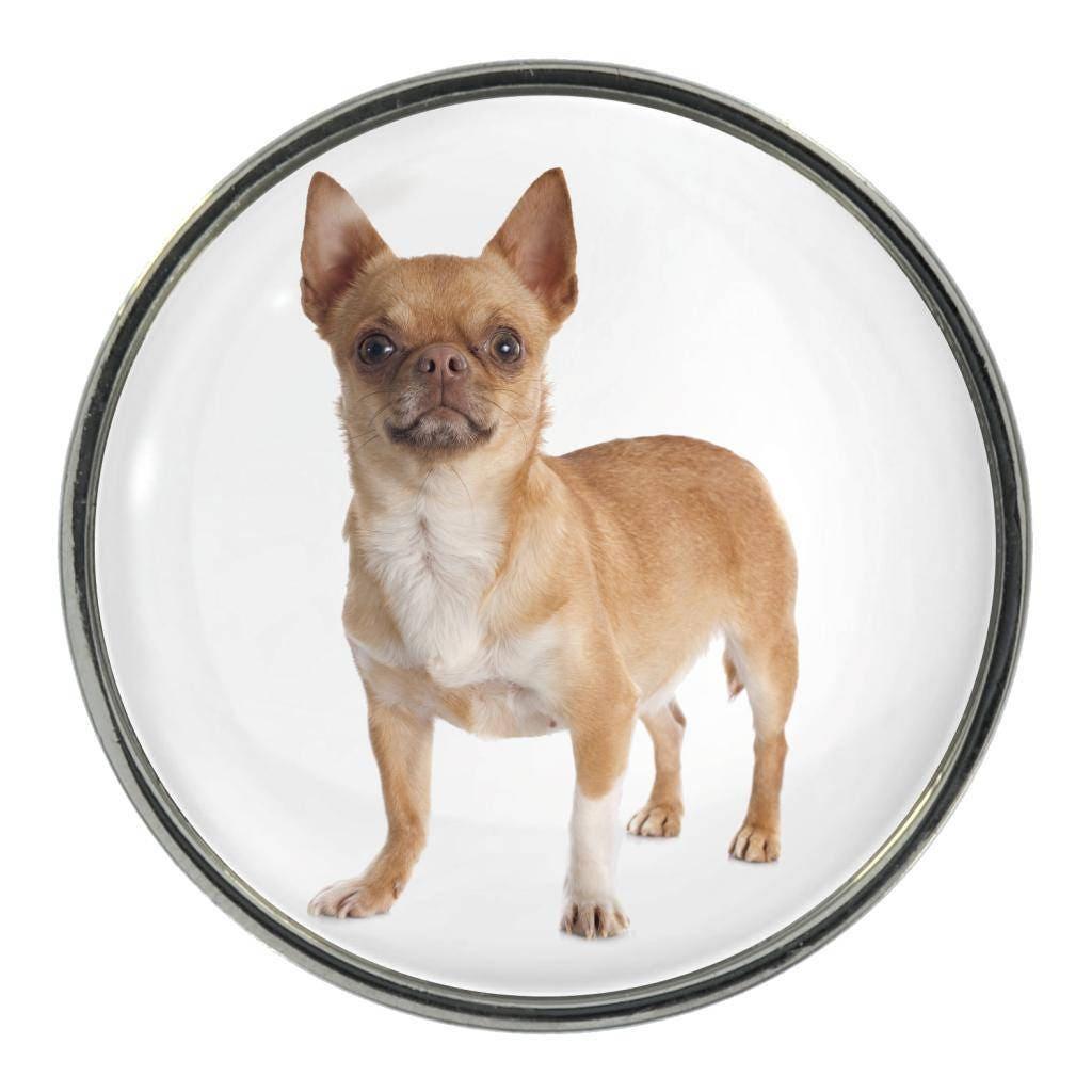 Chihuahua Image On Metal Pin Badge