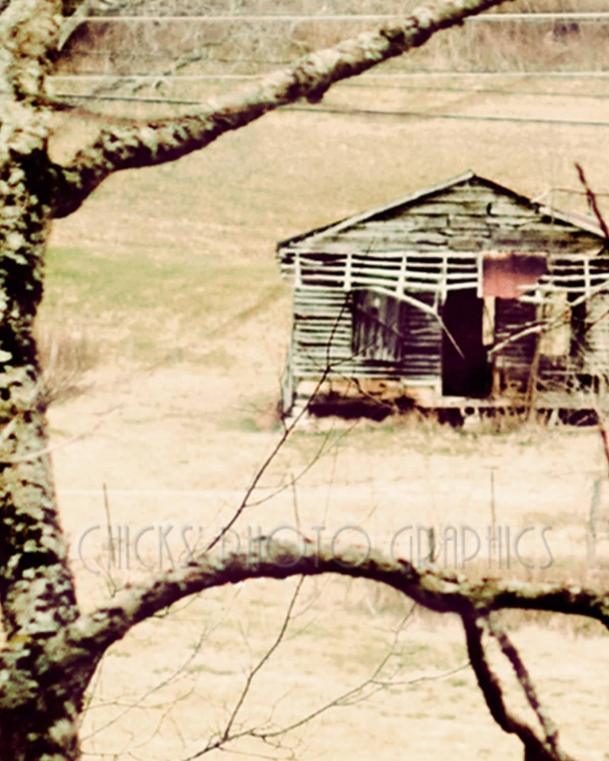 "Landscape Nature Photo Print, Old Store, Shack, Fine Art, Wall Art, Vintage Look, Bunker Town, Statesville, TN, Landscape, ""Still Revered"""""