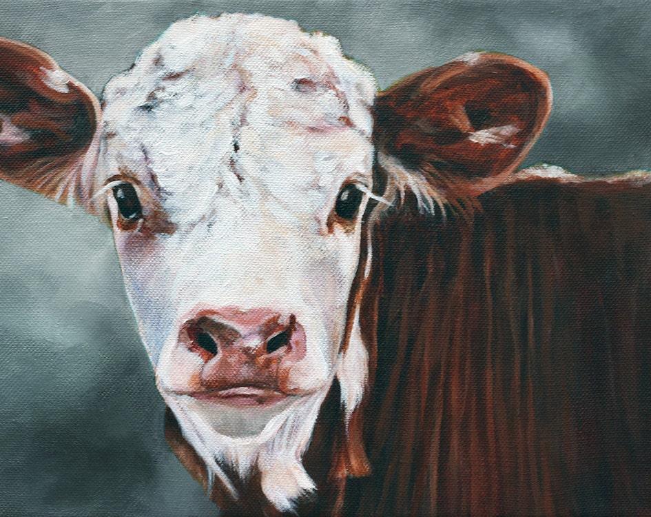 Original art calf print cow print fine art print by cmqstudio for Cow painting print