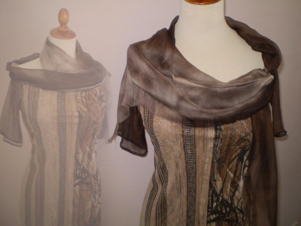 Brown Dress with silk collar and sleeves