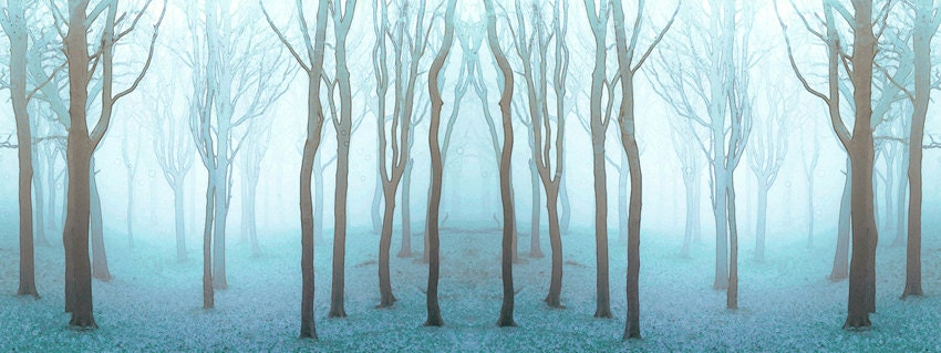 Tree Photography Landscape Photography Enchanted Woodland Dreamy Nature Pale Blue Wood - MOONGARDENART
