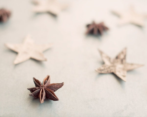 Food photography star anise print -  rustic home decor - christmas holiday photo modern dreamy whimsical brown silver white - photographybykarina