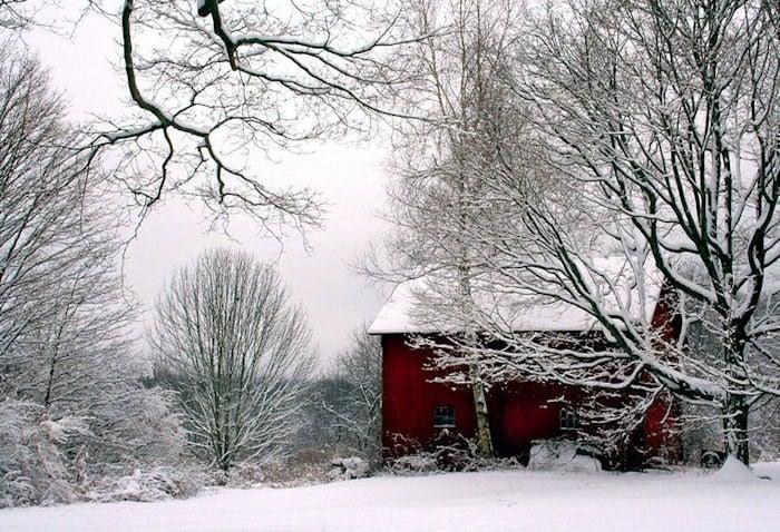 Red Barn In Snow Winter Scenery Landscape By