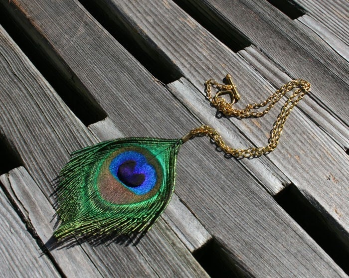 Peacock Feather Necklace - Single Peacock Feather Gold Choker Necklace ...