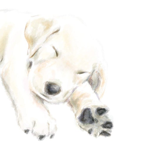 "Golden Retriever Puppy Art Card on 6 x 6"" watercolor paper - triplestudio"