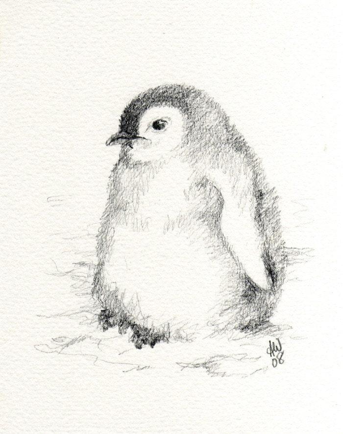 Emperor Penguin Chick Original Sketch By Wildsunart On Etsy