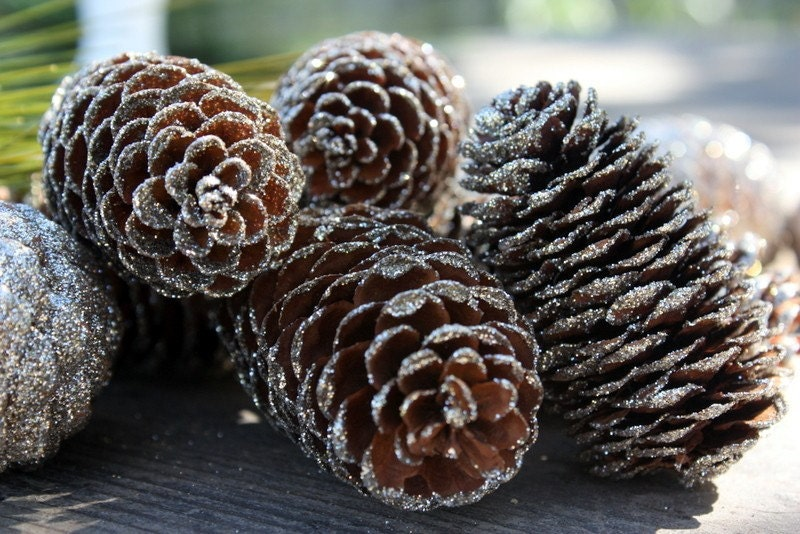 Silver glitter pine cones set of 10 by sweetsomethingdesign for What to do with pine cones for christmas