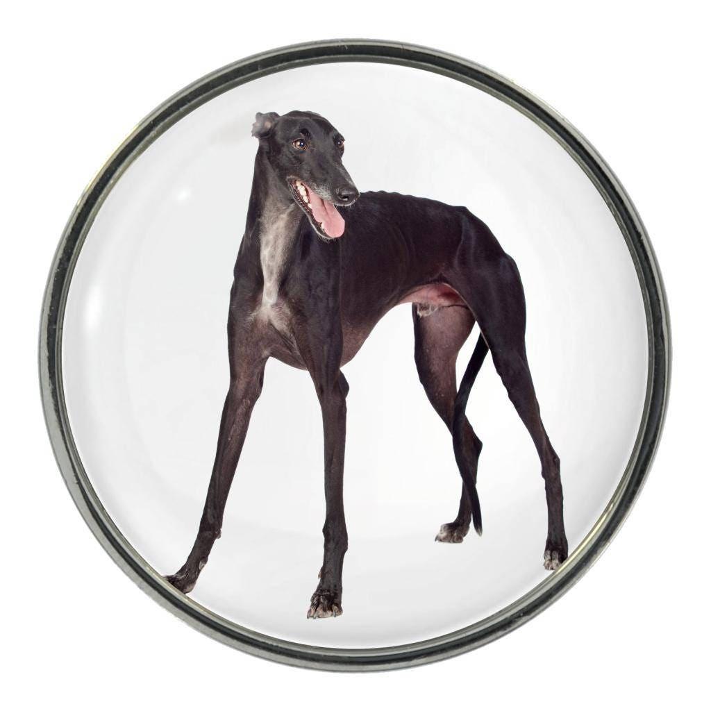 Greyhound Image On Metal Pin Badge