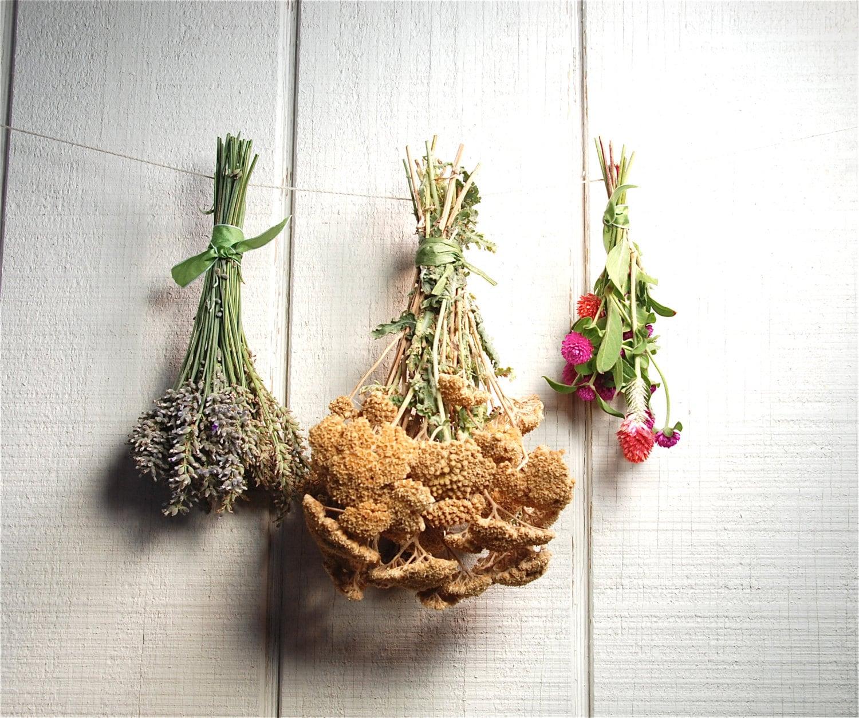 Everlastings, Bouquet, Farm House, Rustic, Harvest - SamieSam