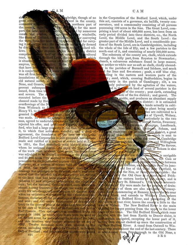 Steampunk Art Print Steampunk Hare Art Book Page Wall Art Wall Decor Poster Hare in Bowler Hat, rabbit print