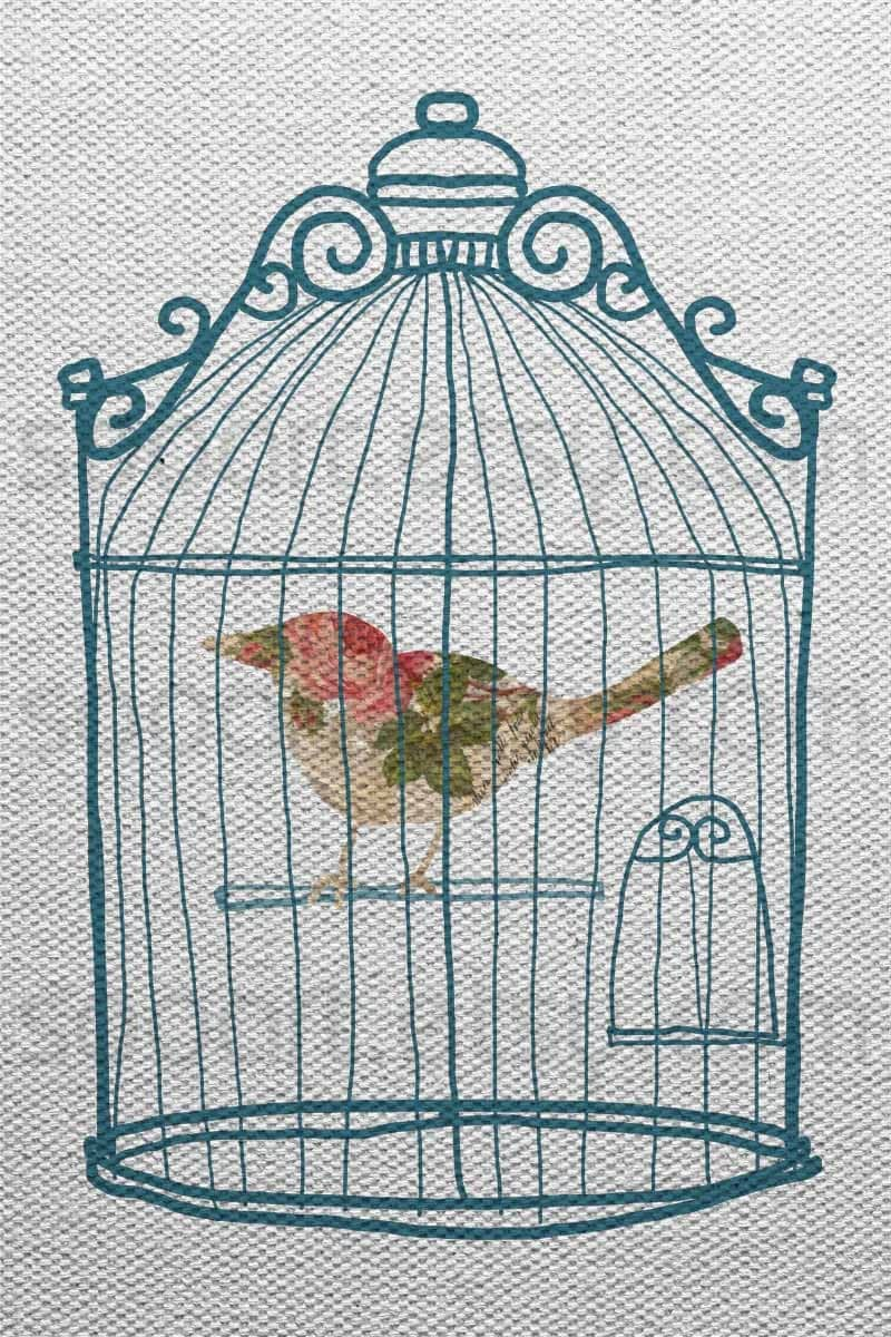 Antique bird cage drawing - photo#11