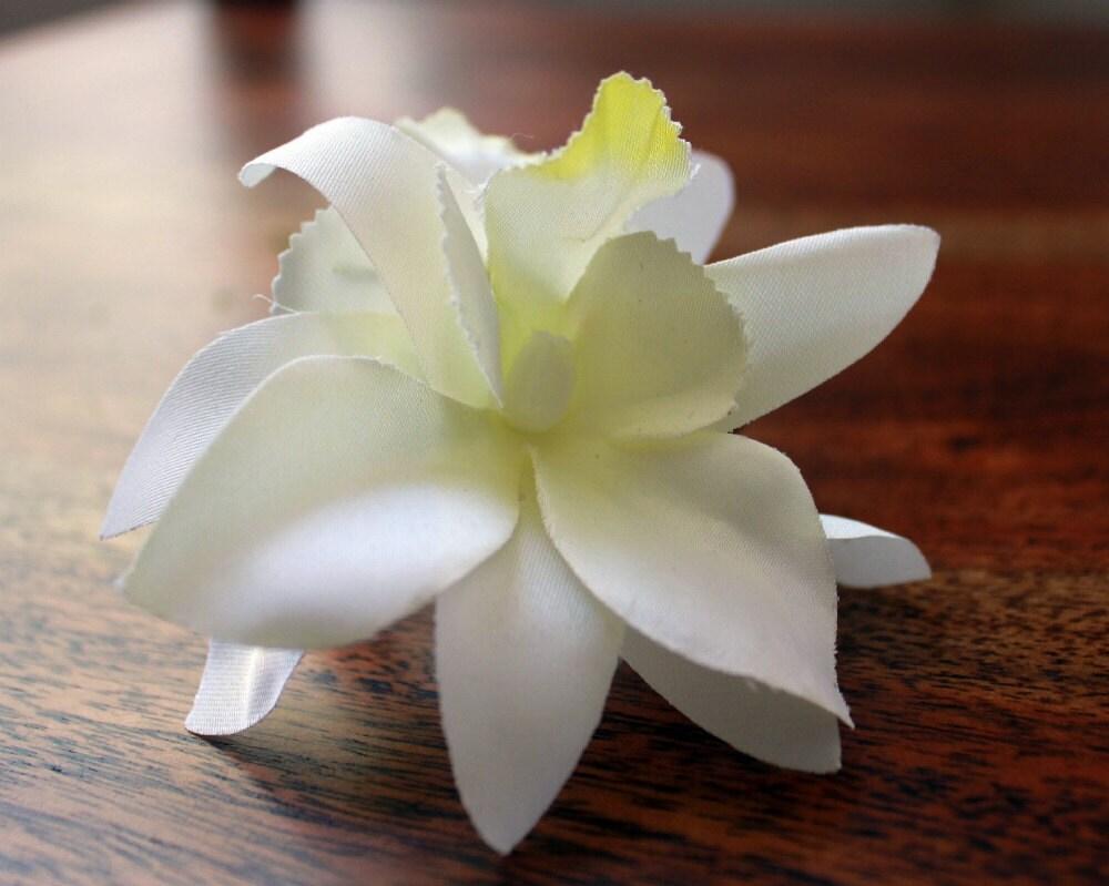 Орхидея и зеленый мох запястье Corsage