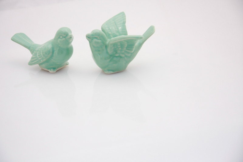 Bird wedding cake toppers  in mint  green love birds in a wedding dance - made to order - claylicious
