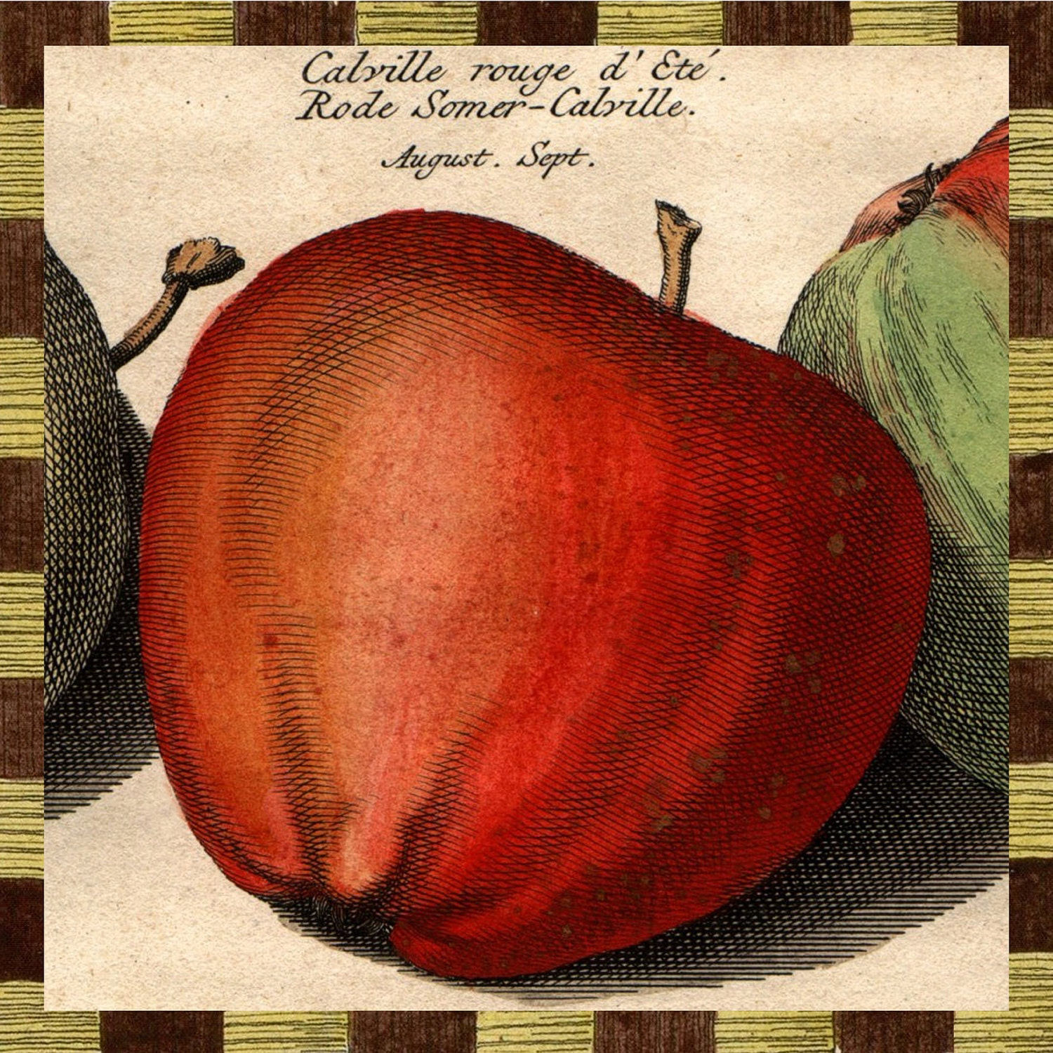 Apple Harvest Decoupage Plate - GlassPaperScizzors