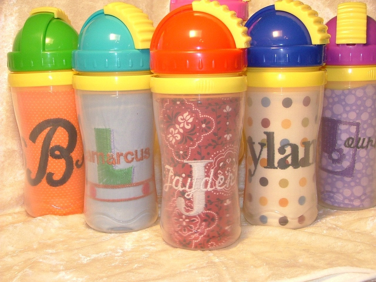 Embroidered Sippie Cup Insert And Playtex By