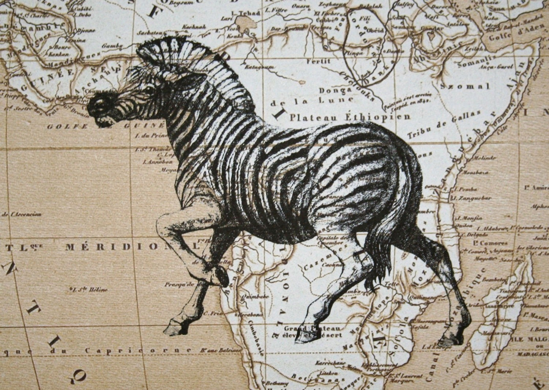 Zebra Print on Map of Africa - 5 x 7 Zebra Map Print - CrowBiz