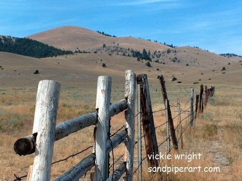 landscape photograph  western landscape  landscape wall art  western home decor  meadow fence photograph