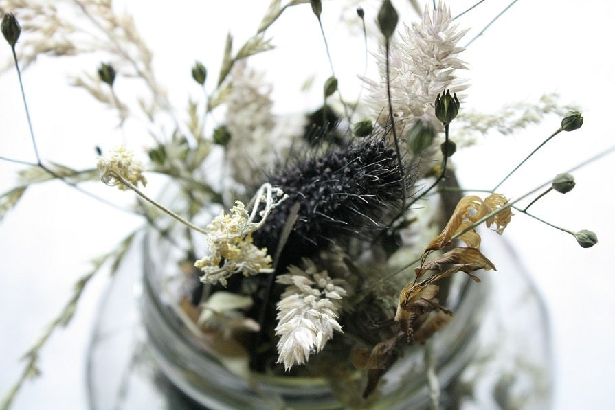 Nature Photography, Wild Flowers in a Jar, Wild Flowers, Still Life Dry Flowers, Hippie Love, Mother Earth, Rustic Home Decor Photography - TheMagiciansCat