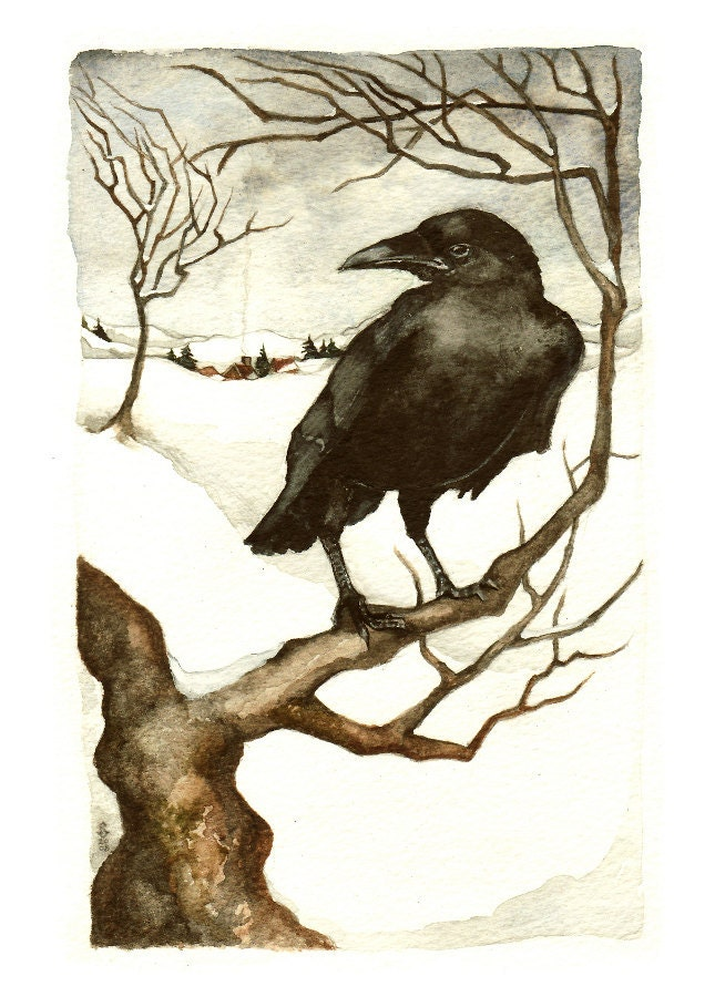 Winter Crow - thehermitage