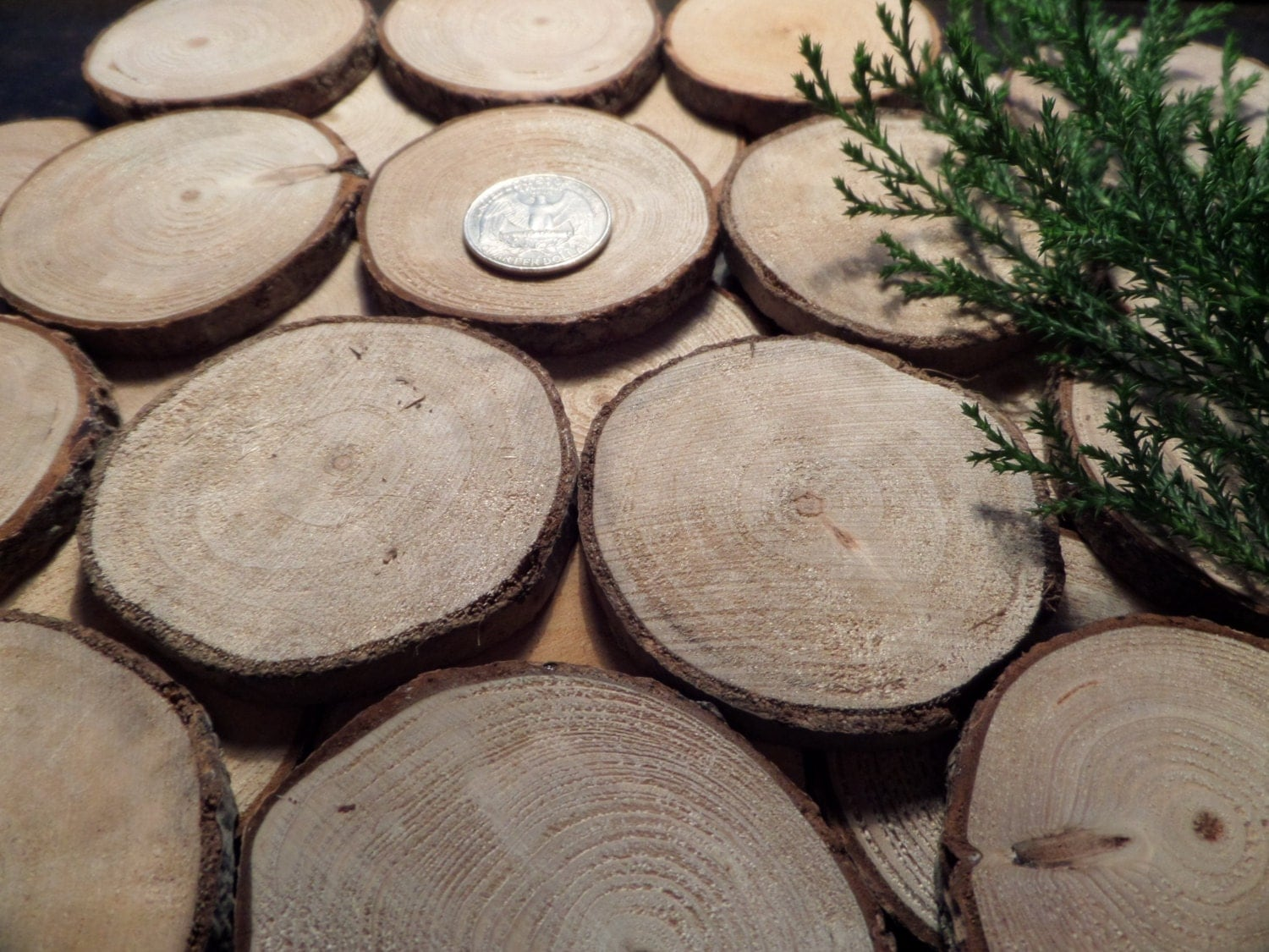 Sea driftwood round cut slices handcrafted wood by for How to cut wood slices