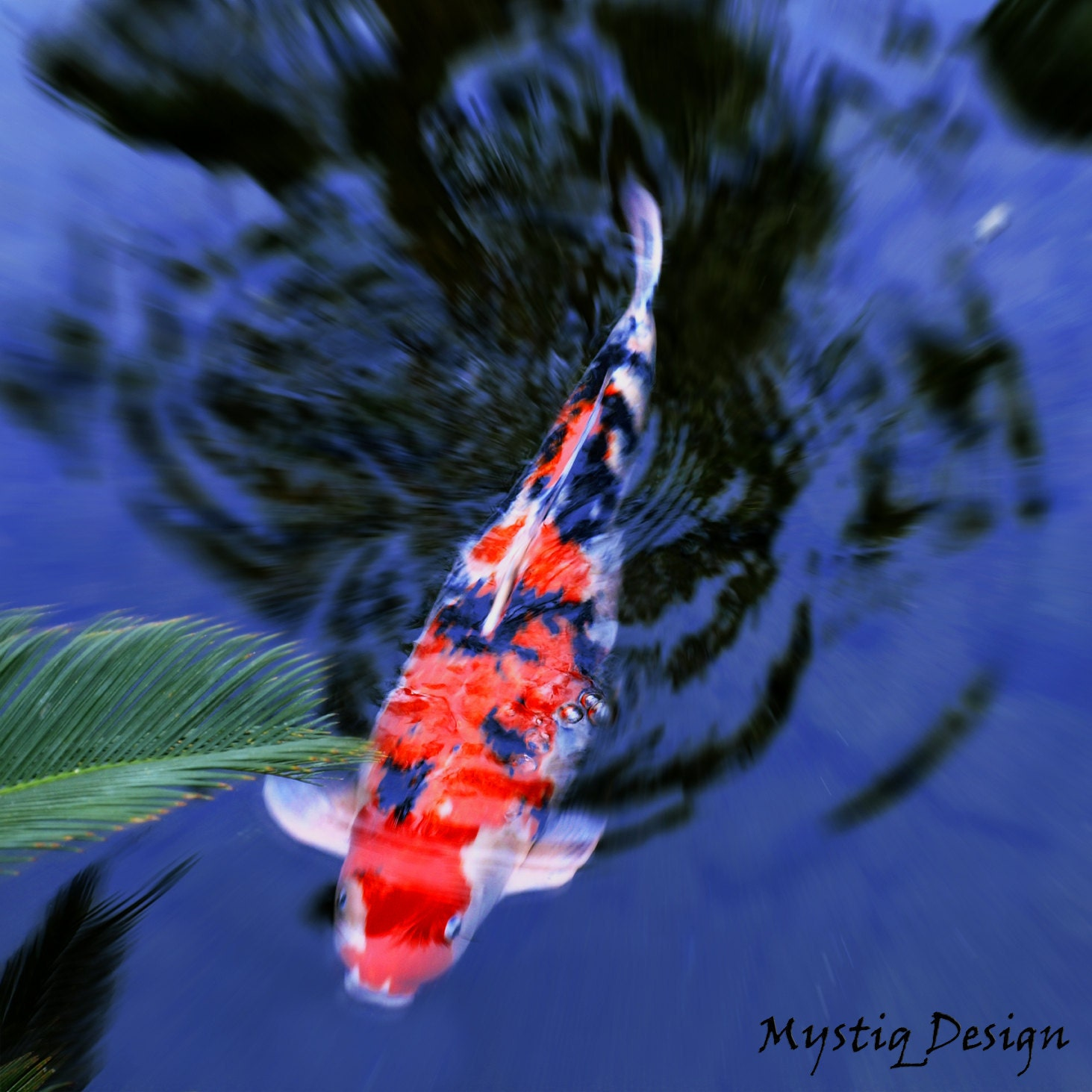 Items similar to lucky goldfish koi pond fish zen navy for Lucky koi fish