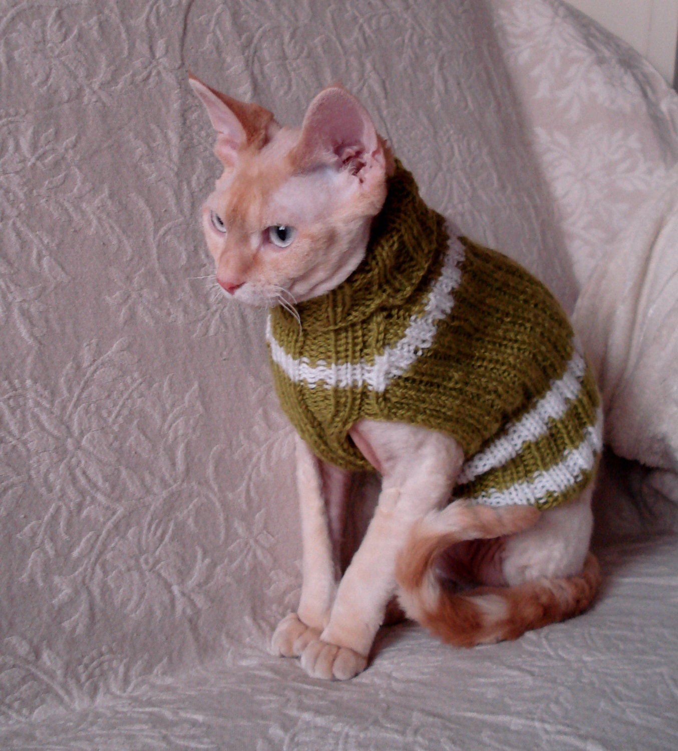 Hand knitted Cat / small Dog sweater jumper jacket by RamonaStore